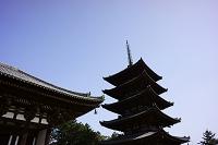 奈良県 興福寺五重塔と東金堂