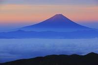 山梨県 朝日に染まる富士山と雲海の山並み