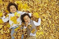 黄葉の落ち葉の上に寝転ぶ外国人の子供たち