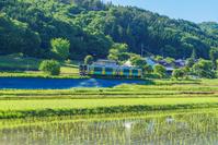 茨城県 JR水郡線