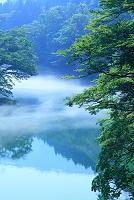 山形県 小国町 飯豊山麓・玉川の川霧