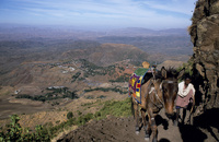 エチオピア ラリベラ 村人とラバ