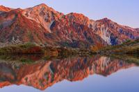 長野県 紅葉の八方池と白馬三山朝景 八方尾根