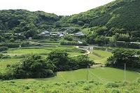 長崎県 春日集落 水田