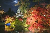 青森県 弘前城 菊と紅葉まつりのライトアップと丑寅櫓 中濠