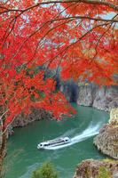 奈良県 紅葉の瀞八丁とウォータジェット船 瀞峡
