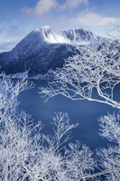 北海道 霧氷の摩周湖
