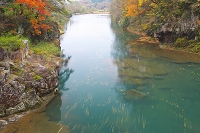 岩手県 秋の厳美渓