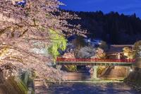 岐阜県 桜咲く宮川と中橋夕景 高山