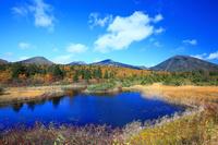 青森県 秋の睡蓮沼と八甲田の山並み