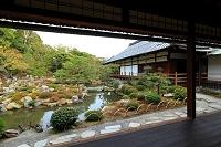 京都府 等持院 書院 芙蓉池と方丈