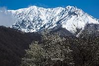 鳥取県 江府町 早春の大山南壁