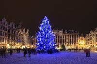 ベルギー グランプラス広場のツリー