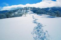 三重県 冬の鈴北岳の尾根