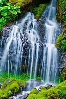 苔の岩と水飛沫 吐竜の滝