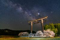 和歌山県 桜咲く大斎原と天の川