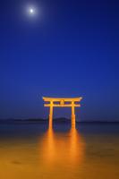 滋賀県 白髭神社 大鳥居ライトアップと月と琵琶湖夕景