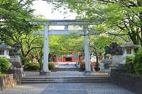 静岡県 富士山本宮浅間大社の石鳥居と楼門
