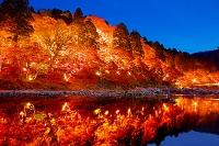日本 愛知県 香嵐渓