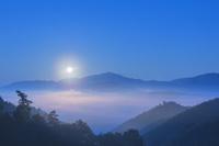 兵庫県 藤和峠から望む竹田城雲海