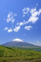 山梨県 三国峠より新緑と富士山