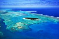 ニューカレドニア グランドテール島西海岸のサンゴ礁