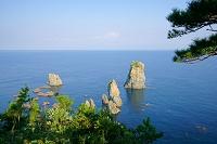 山口県 青海島 朝日を浴びる十六羅漢