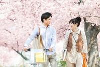 桜の下で会話するカップル