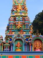 ヒンドゥー教寺院と猿