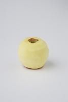 皮を剥いた後のリンゴ