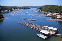三重県 英虞湾 真珠の養殖