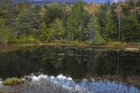乗鞍高原 秋の牛留池