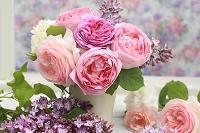 ピンクのバラとライラック