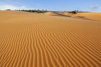 ベトナム ムイネーの砂丘