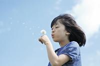 たんぽぽの綿毛を吹く日本人の女の子