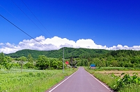 北海道 田園の田舎道