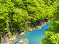 日本 秋田県 新緑の抱返り渓谷