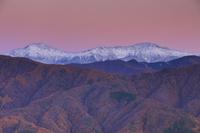 長野県 中川村 陣場形山より北岳と紅葉のカラマツ林 夕景