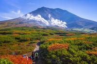 北海道 噴煙上げる旭岳