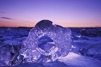 北海道 十勝川河口 ジュエリーアイス(海岸に打ち上げられた氷)