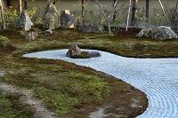 京都府 高台寺庭園
