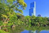 大阪府 日本庭園とあべのハルカス