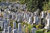 茨城県 明星院 墓地