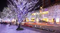 東京都 六本木クリスマスイルミネーション