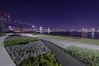 東京都 有明北緑道公園からレインボーブリッジの夜景
