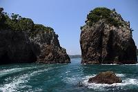 マグロ漁業基地 勝浦漁港