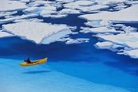 アラスカ  ジュノー浮氷原