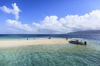 西表島 南の島のイメージ バラス島