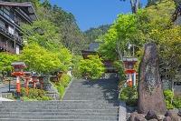 京都府 新緑の鞍馬寺の仁王門