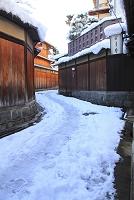 京都府 雪景色の石塀小路